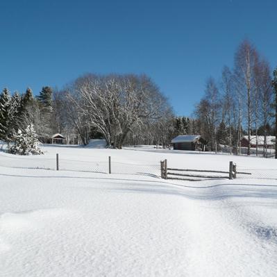 vinter-fast