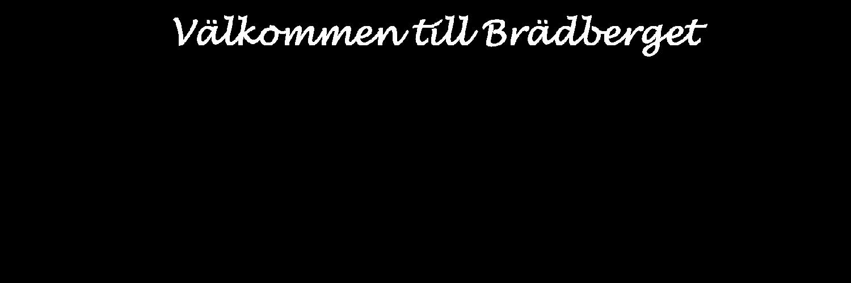 Hyr stuga i Grangärde, Brädberget.